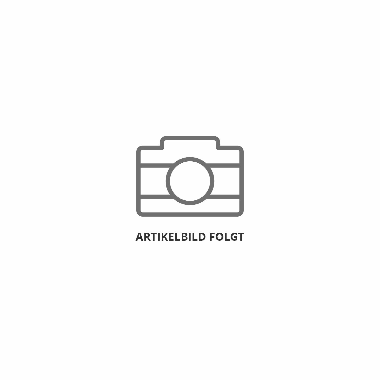 PRO DALI auf 0-10V/1-10V Signal Konverter