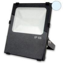 LED Fluter PRO100, prismatisch, 100W, kaltweiß, IP66